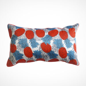 Coussin Ananas ClaireBeaugrand